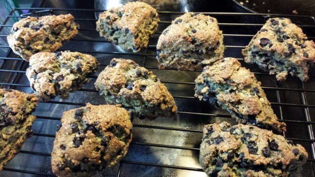 Wild Blueberry Scones (Gluten-Free)